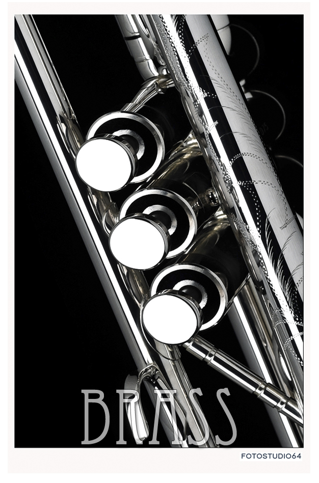 BRASS_Cover