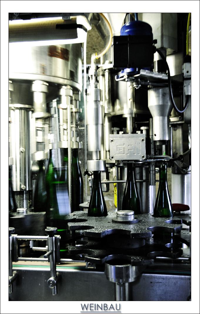 Eventfotografie und Reportagen Trier_Cover_Weinbau